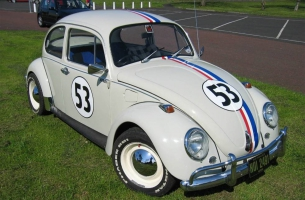 The Herbie Hunt
